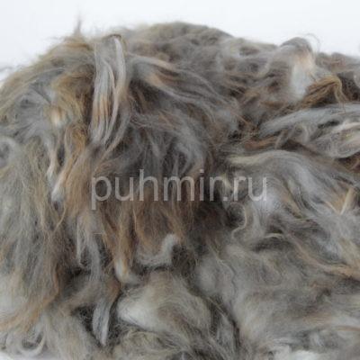 Пух кролика породы Агутти